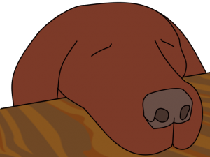 dogasleep