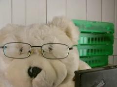 Ruthie bear